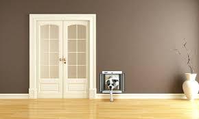 wall mount dog doors wall mount dog door imposing picture concept pet doors the best flaps