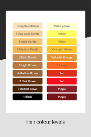 Hair Colour Level Chart Do You Want To Go Blonde Hair Colouring Advice From The