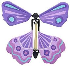 Butterfly Magic - Wind-Up Toys / Novelty & Gag Toys ... - Amazon.in