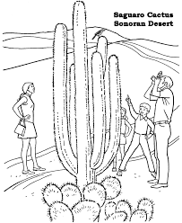 Small Picture Desert Coloring Pages Coloring Book of Coloring Page