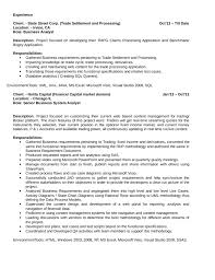 business systems analyst resume academic english writing study skills university of manchester
