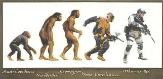 Evolution Of Man Chart Human Evolution