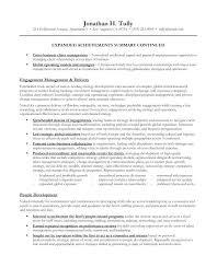 Sample Career Summary For Resume Career Summary Resume Sample ...