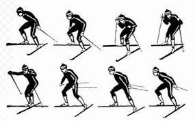 Виды ходов на лыжах для уроков по лыжной подготовке Полуконьковый ход