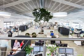 office interior design companies. Perfect Companies Tree In The Middle Of Office Magna Housing Inspiring Biophilic  Design Ideas By Interior Company Interaction UK In Office Interior Design Companies