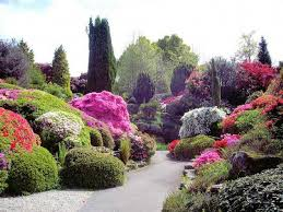 Small Picture Best Of Small Rose Garden Design Ideas Most Beautiful Rose Gardens