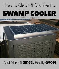 how to clean disinfect a swamp cooler make it smell good