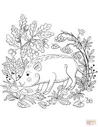 Small Picture Wild Boar in the Forest coloring page Free Printable Coloring Pages