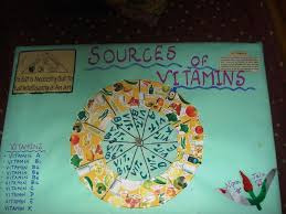 Vitamins What They Do Chart Poster Chart Project On Sources Of Vitamins Smart Indian Women