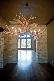lighting in homes. Beacon Homes: Antler Chandelier Lighting In Homes