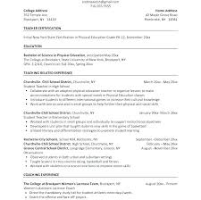 Temple Resume Template Examples 24 Free Examples Resignation Letters