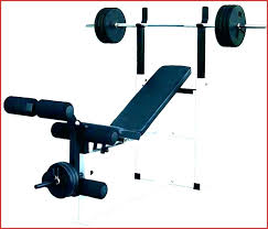Golds Gym Weight Bench Odawalkes Co