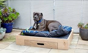 dog sitting in timber diy pet bed with feeding station