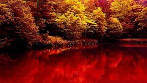 Nature autumn lake forest red beauty ...