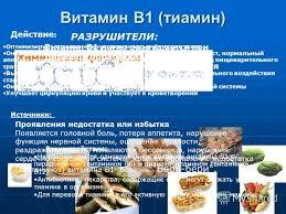 Презентация на тему Реферат На тему Витамины Значение  5 Витамин