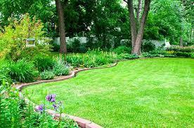 15 best gardening edging ideas