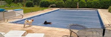ellis pool covers inc dog party