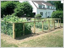 vegetable garden fence plans ideas veggie deer designs