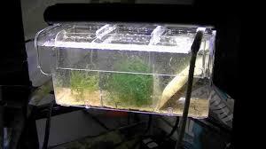 Marineland Aquarium Light