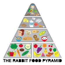 unhealthy food pyramid.  Food And Unhealthy Food Pyramid C