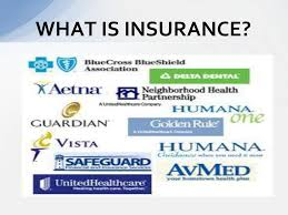 Log in to file a claim, check benefits, and more! The Blues Plans Private Insurance And Managed Care Plans Ppt Download