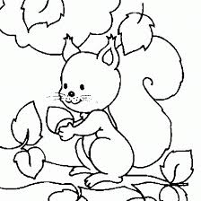 Small Picture Children Squirrel Coloring Pages Animal Coloring pages of