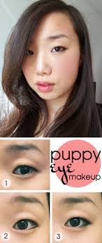 move over cat eye have you tried the puppy eye look