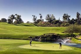 Reviews Of Ping Zing 2 Irons Golflink Com