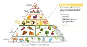 nourishing hope pyramid food food pyramid and food food pyramid essay autism diet and nutrition workshop julie matthews keynote