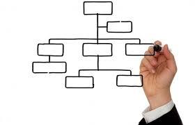Blank Organization Charts Lovetoknow