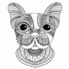Disegni Da Colorare Per Adulti Mandala I Mandala Degli Animali Del