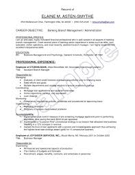Web Manager Sample Resume Resume For No Experience Template