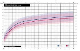 Average Head Size Chart Sizechart Tinyturtle