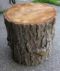 Tree Stump Seats Diy Tree Stump Table K Sarah Designs