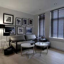 Cool Apartment Decorating Ideas One Bedroom Apartment Decorating Ideas Cool  With One Bedroom Decor