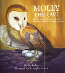 Molly the Owl: The True Story of a Common Barn Owl That Ends Up ...