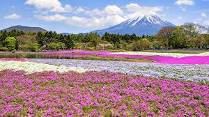 Japanese Landscapes Beziehen Microsoft Store De De
