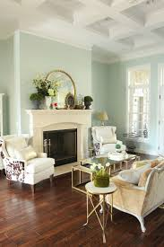 Living Room Wall Colour 17 Best Ideas About Mint Living Rooms On Pinterest Mint Blue