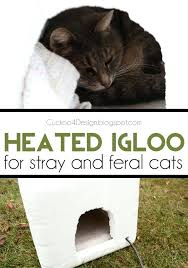 outdoor cat bed heated igloo for feral and stray cats home blogger contributor network cats outdoor cats and pets outdoor pet bed diy