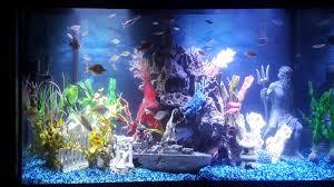 Fun Fish Tank Decorations Batfish Aquatics Home Page
