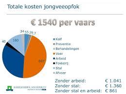 Kosten jongveeopfok