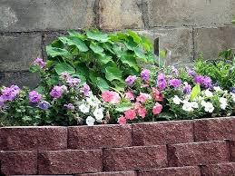 brick garden edging. brick garden edge edging ideas mortar