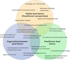 Understanding The Factors Affecting Self Management Of Copd From The
