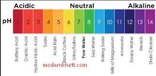 Ph Level Chart Ph Value Chart In Hindi Www Bedowntowndaytona Com