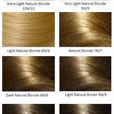 Aequo Color Chart Argan Oil Hair Color Light Golden Blonde Lovely Hair Color