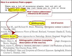 Essay Citation Example