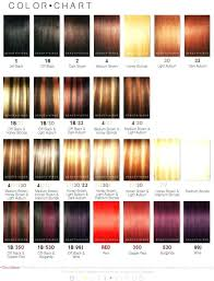 Sally Hair Color Chart 5 Sally S Ion Hair Color Chart Todayss Org Sally Beauty