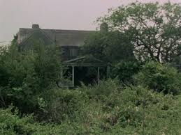dilapidated this is grey gardens as it looked in 1975 when the mansion became