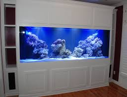 fish tank stand design ideas office aquarium. Built In Saltwater Tank | 180 Gal. Built-in Aquarium The Walthours Blessing(Our Dream Home) Pinterest Tank, Aquariums And Fish Tanks Stand Design Ideas Office
