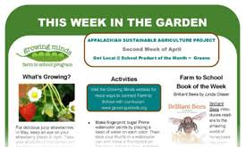Newsletters Templates This Week In The Garden Monthly Newsletter Templates
